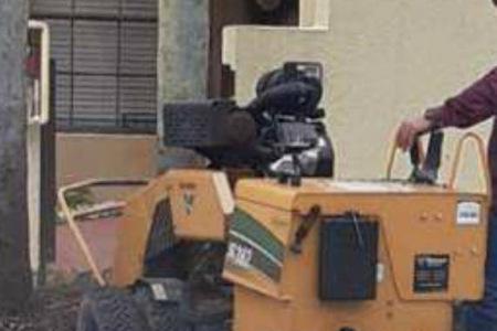 tree-removal-service-miramar